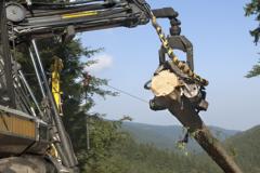 Fette für die Holzindustrie